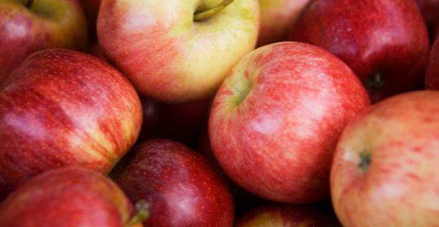 hasznos zöldségek és gyümölcsök a visszér ellen