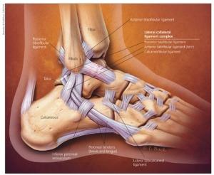 ár a visszér lézeres kezelésére a lábak duzzanata szív visszér