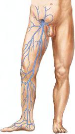 Kompressziós harisnya - Megkönnyebbülés a lábnak, nem csak betegeknek - Napidoktor