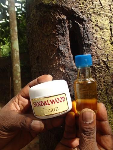 zöld olaj Srí Lankából a visszér ellen