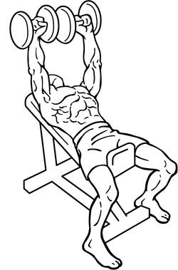 visszér fizikai aktivitás visszér orvos véleménye