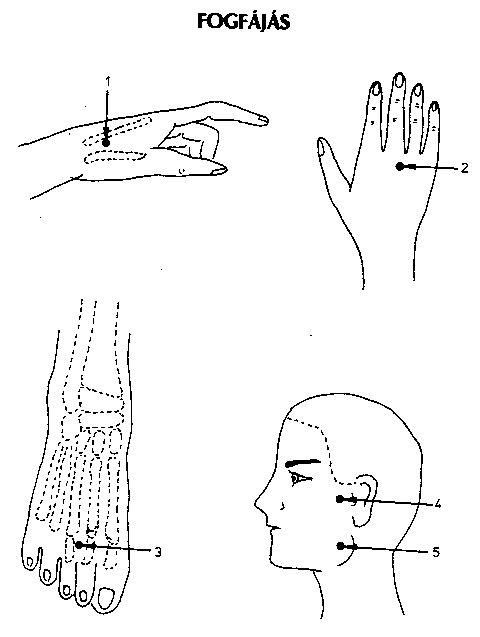 50+ Best Akupunktúrás pontok images   akupresszúra, pont, masszázs