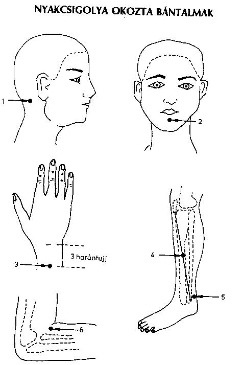 Elektro-akupunktúrás terápiák