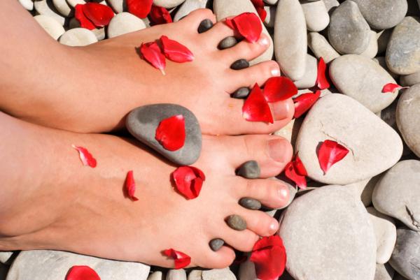 Nem kell többé rejtegetned a lábad: 5 gyógynövény a makacs visszér ellen